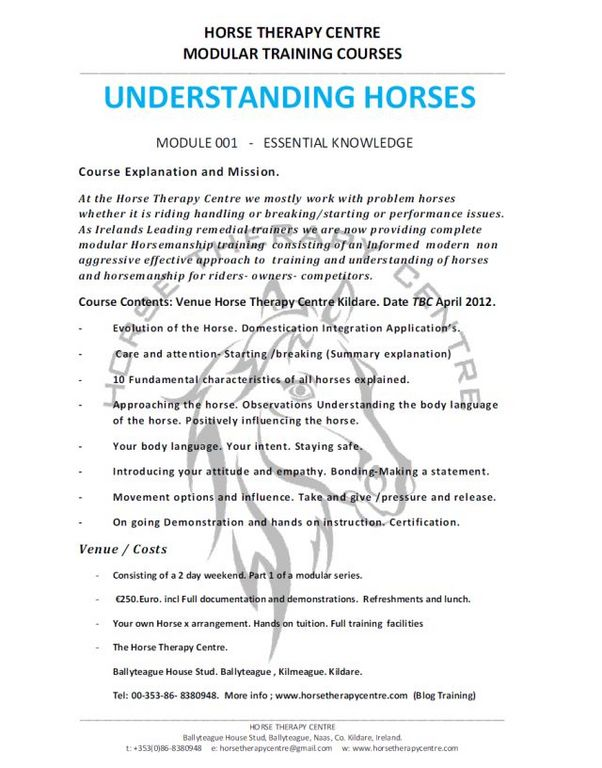 Understanding Series Flyer